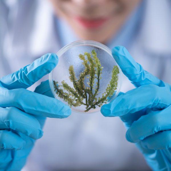 Microbiological & Deposit Control Program