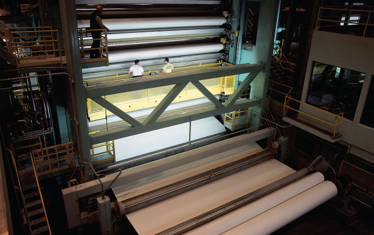 Industrial Enzymes and Chemical Pulping in Paper Industry
